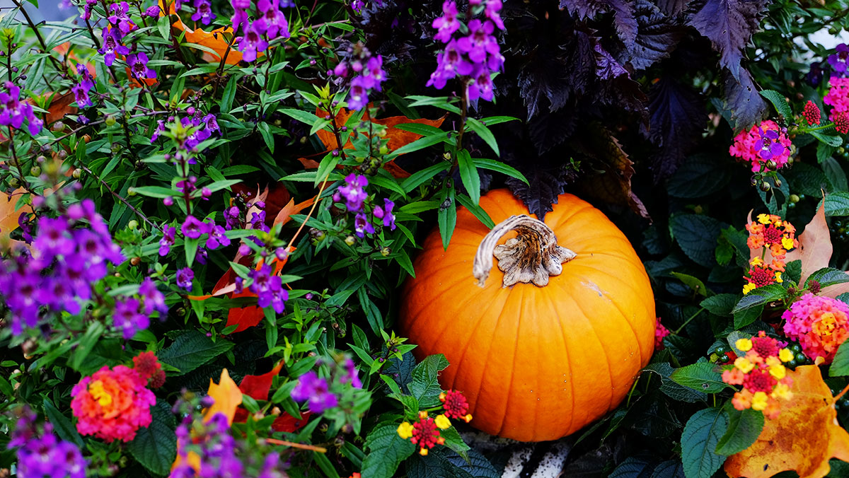 autumn_jen_murphy_fitness_b